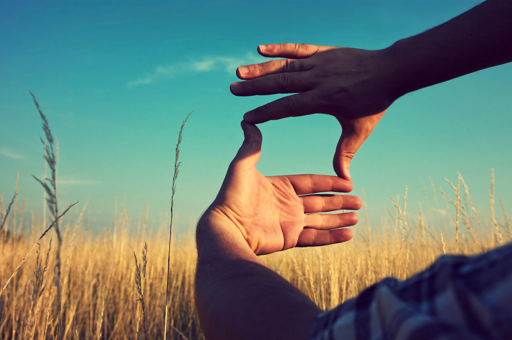 hands framing in a field