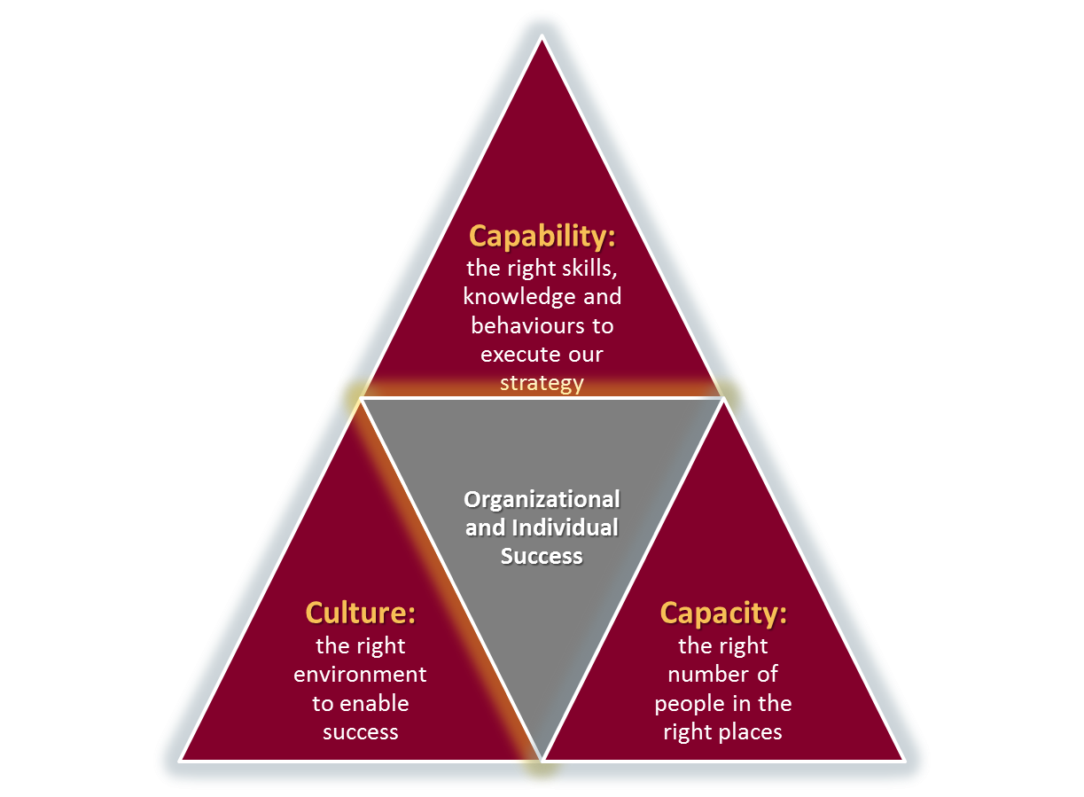 mcmaster leadership model