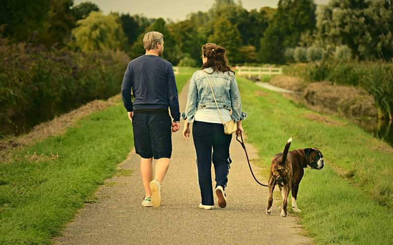two people walking dog on trail